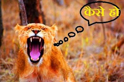 असम में कौन सी भाषा बोली जाती है ? (Assam Mein Kaun Si Bhasha Boli Jati Hai?)