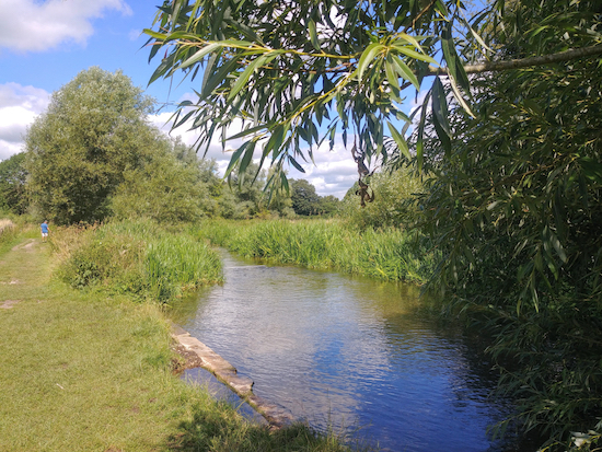 A paddling spot along the River Chess between points 5 & 6 below Image by Hertfordshire Walker released via Creative Commons BY-NCSA 4.0