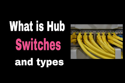 Hub and switch in networking