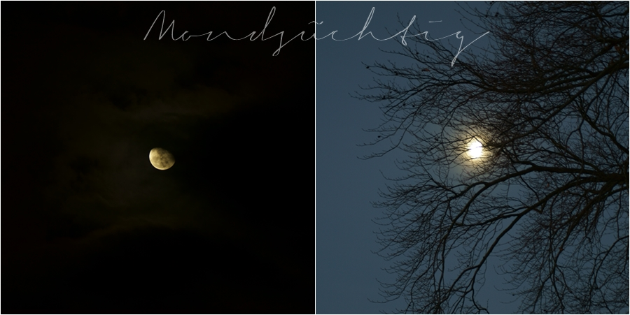 Blog + Fotografie by it's me! - Mond am 29. und 30.12.2015