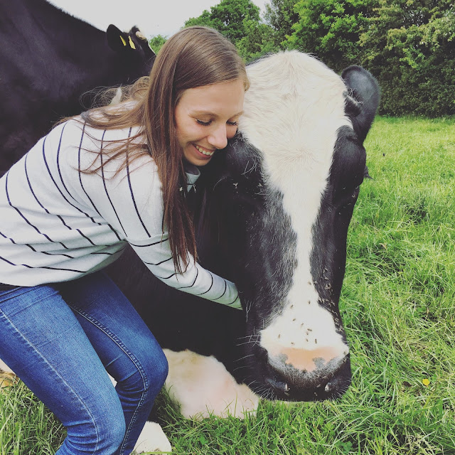 Hugletts Wood Farm Animal Sanctuary | Clare-Without-An-I