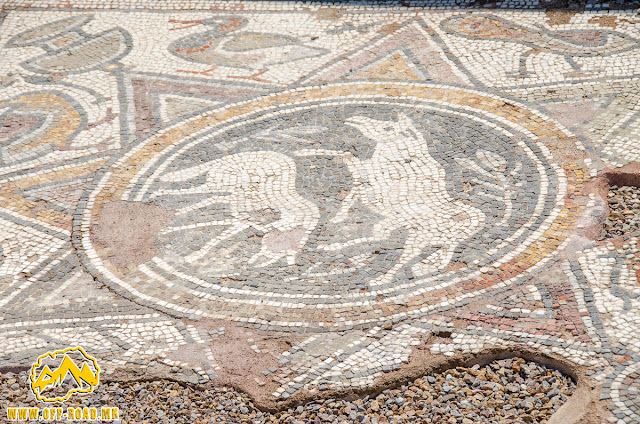Mosaic - #Stobi Archaeological site #Macedonia