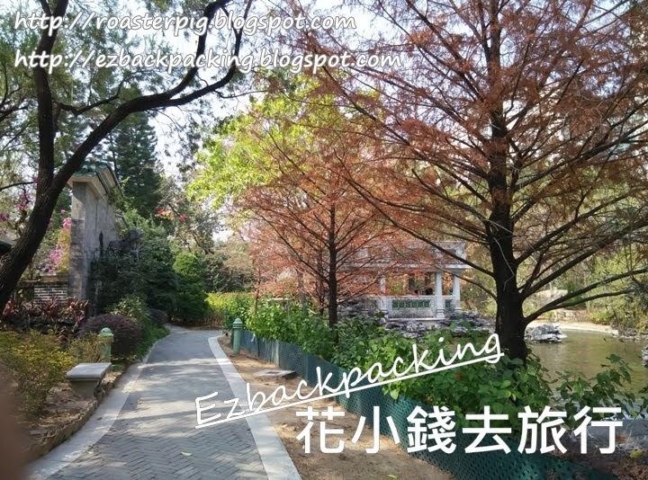 荔枝角公園紅葉