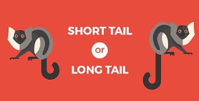 Long Tail Keyword atau Short Tail Keyword