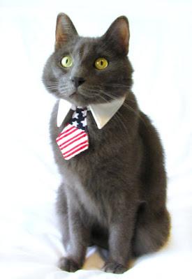 https://www.etsy.com/listing/130144919/dogcat-american-flag-necktiebowtie-on-a