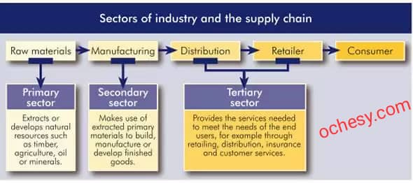 PRODUCTION SECTORS OF AN ECONOMY