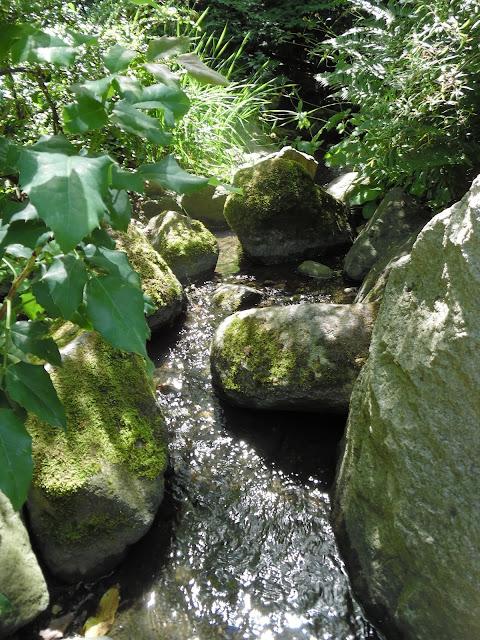 omszałe kamienie nad strumieniem w ogrodzie japońskim