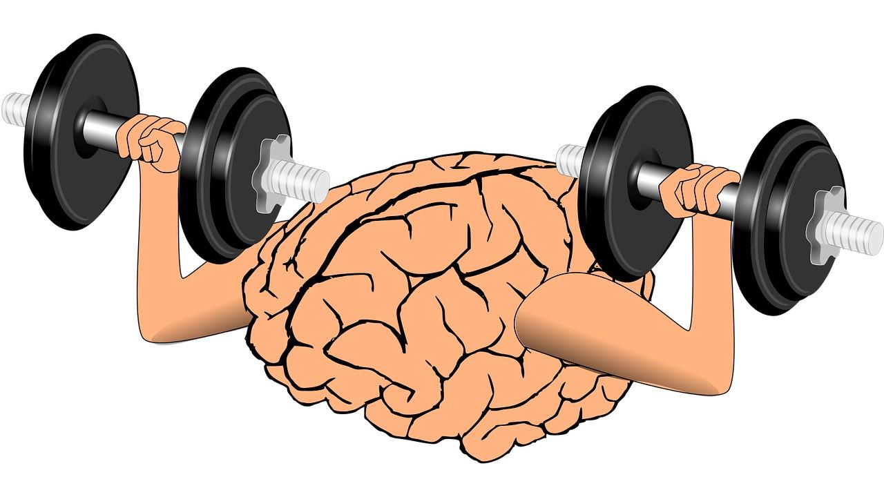 كيف نحافظ على العقل، اختبار صحة الدماغ، كيف تحافظ على صحة دماغك، كيف يؤثر التمر على صحة الدماغ، كيف يؤثر التمر على الدماغ، كيف يؤثر التمر على صحة الدماغ الجواب، علامات سلامة الدماغ، تأثير الغذاء على الدماغ