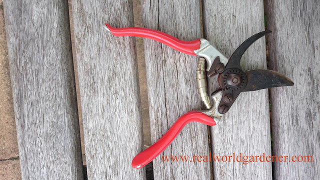1-secateurs.JPG