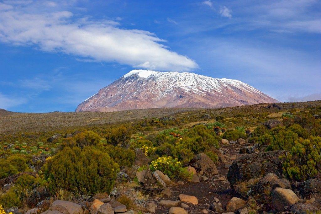 Гора Килиманджаро - самая высокая отдельно стоящая гора