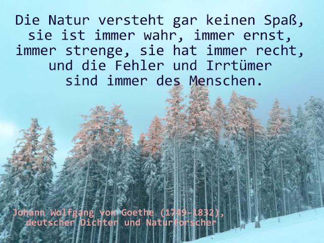 Zitat - Quote by Johann Wolfgang von Goethe (1749-1832)