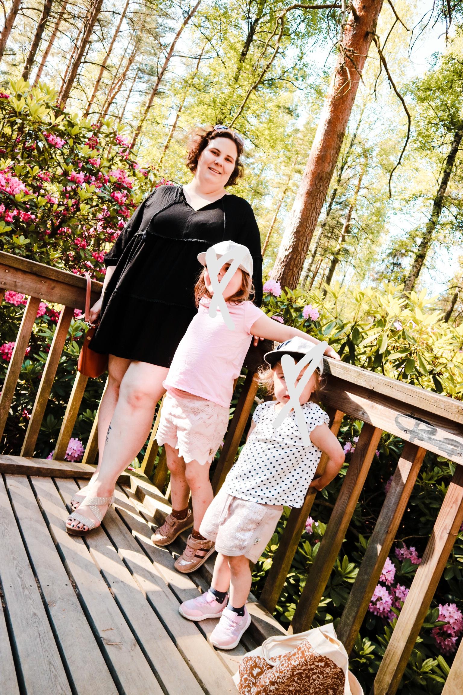 Big mamas home by Jenni S. Arki just nyt