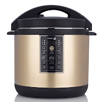Fagor gold multi cooker