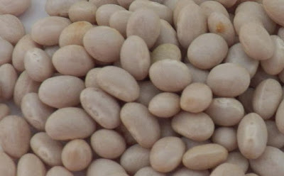 white kidney beans for weight loss