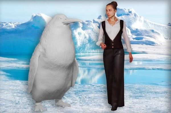 Hallan los restos de un pinguino del tamaño de un humano.