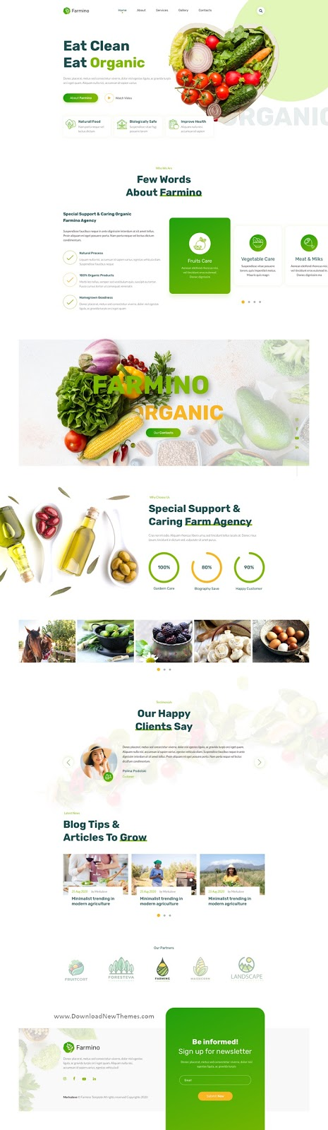 Best Organic Food Template for Sketch