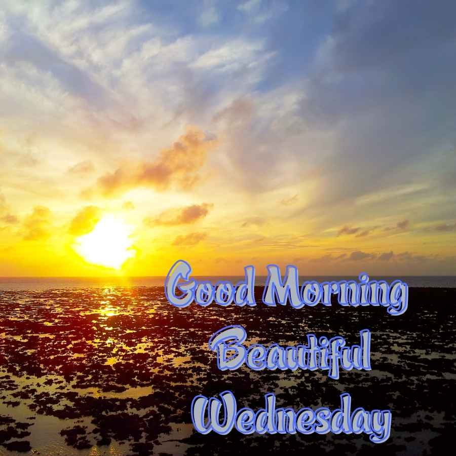 happy wednesday good morning images