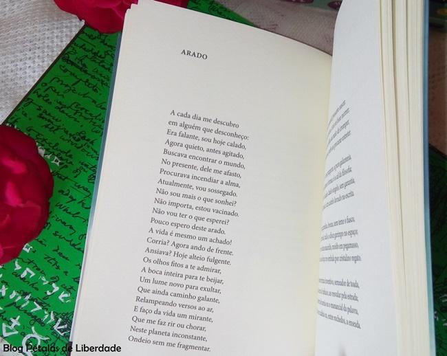 Arado, Poemas-ao-desabrigo, Raul-de-Taunay, 7letras, resenha, livro, poesias,