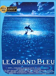 Le grand bleu (El gran azul) (1988)HD [1080p] Subtitulada [GoogleDrive]