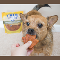 True Chews Premium Jerky Cuts Dog Treats Review