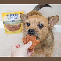 True Chews Premium Jerky Cuts Dog Treats Review