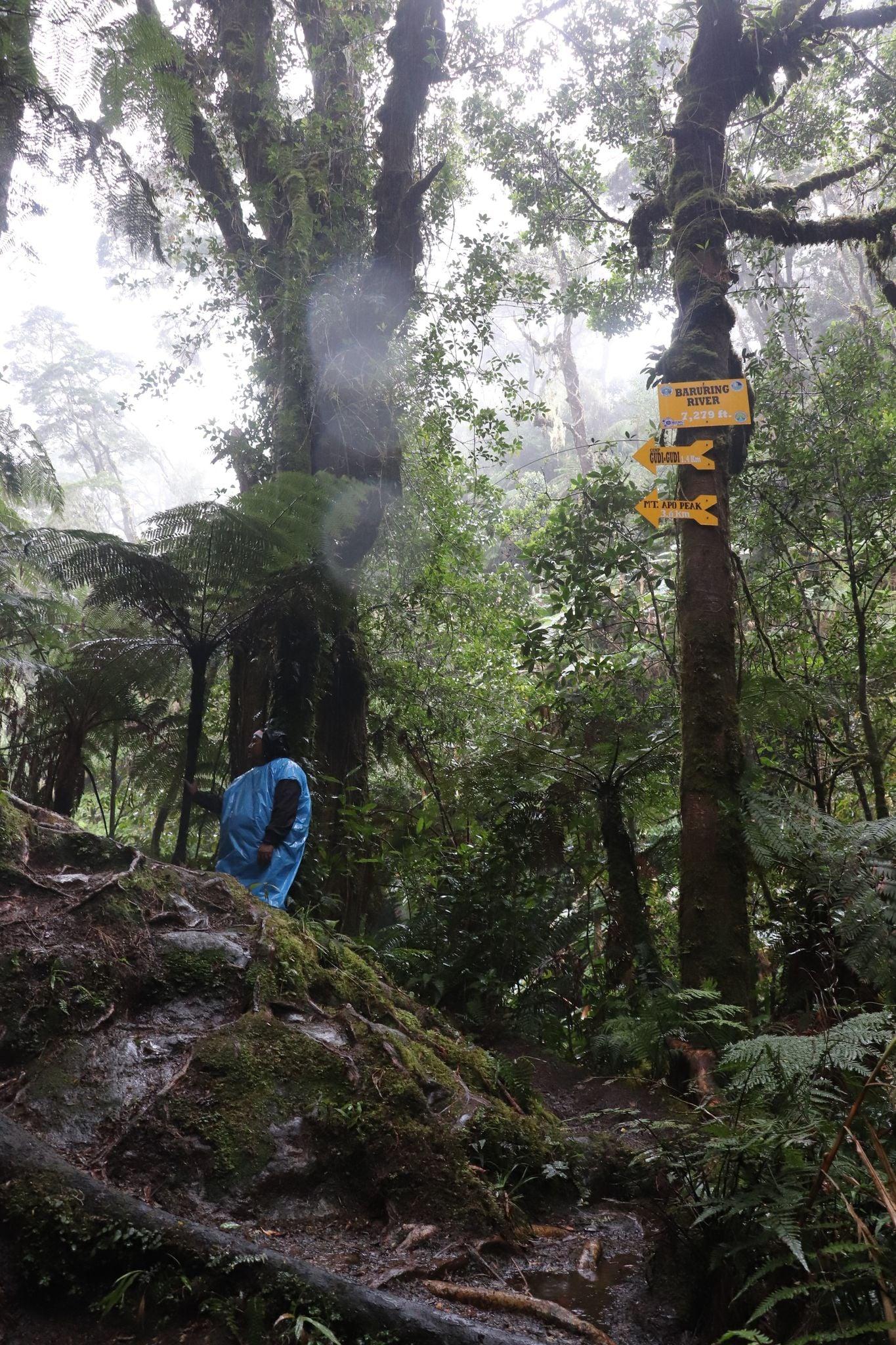 Mt. Apo Trail Markers - Baruring River, Camp Gudi-Gudi, Mt. Apo Peak
