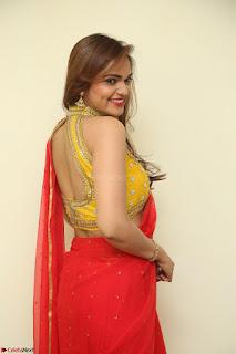 Actress Ashwini in Golden choli Red saree Spicy Pics ~  052.JPG