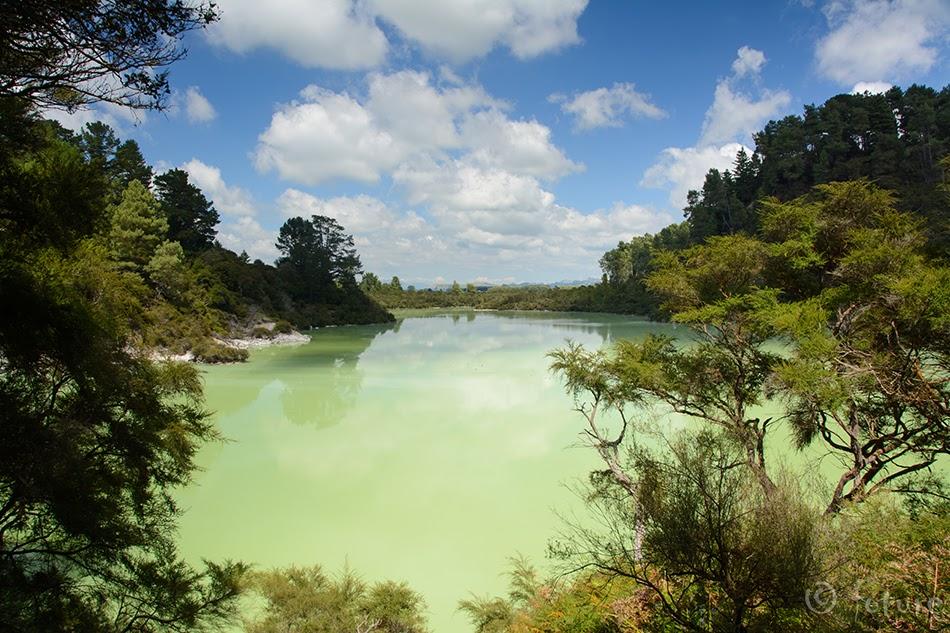 Lake Ngakoro, Waiotapu geothermal area, New Zealand