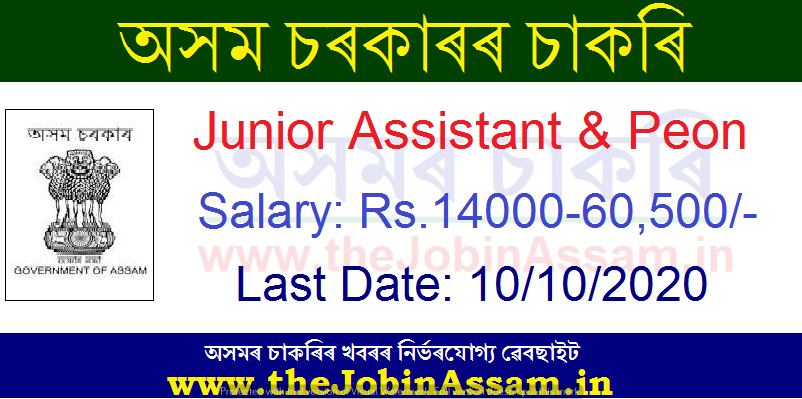 District Library, Haflong, Dima Hasao Recruitment 2020