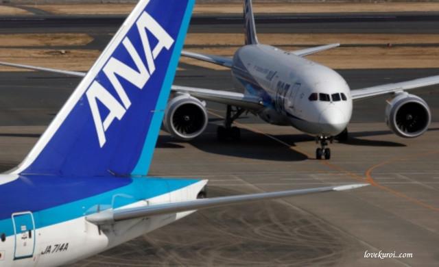 Японская авиакомпания ANA Holdings