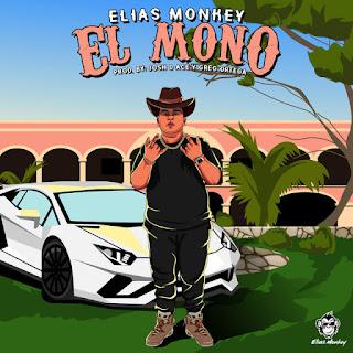 195780674 884236482167033 1933611682341898652 n - Elias Monkey - EL Mono