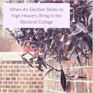 When An Election Stinks to High Heaven, Bring in the Electoral College