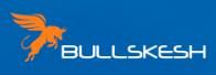 bullskesh.com обзор