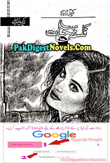 Falsafa-E-Hayat Urdu Novel By Kaneez Zahra Free Download Pdf