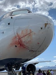 Delta Boeing 757 carrying NBA team Utah Jazz forced to make an emergency landing after bird strike