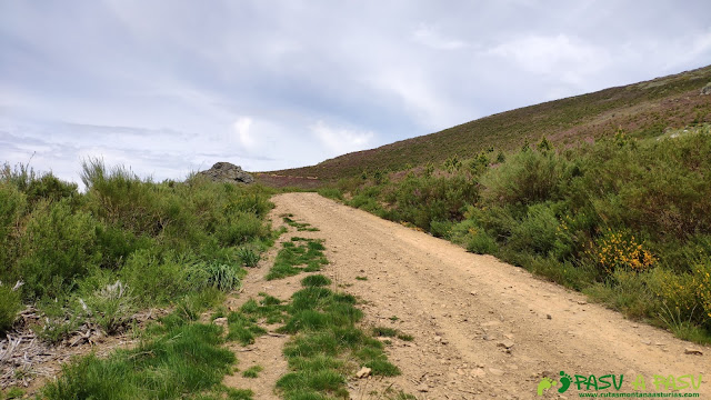 Pista desde el Collado el Fito hacia la zona del Pico Amargones