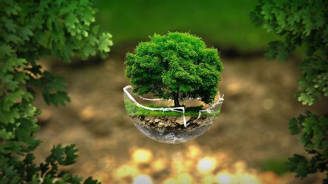 50 cambiamenti quotidiani e regole base per vivere più Green
