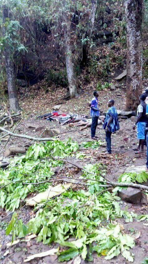 Photos: Trees crash 19 to death at Kintampo Waterfalls