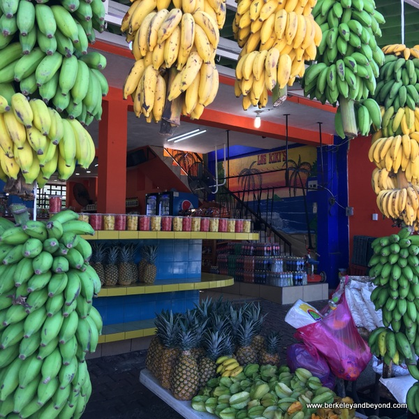 Los Kikis fruit stand near San Blas on Riviera Nayarit in Mexico