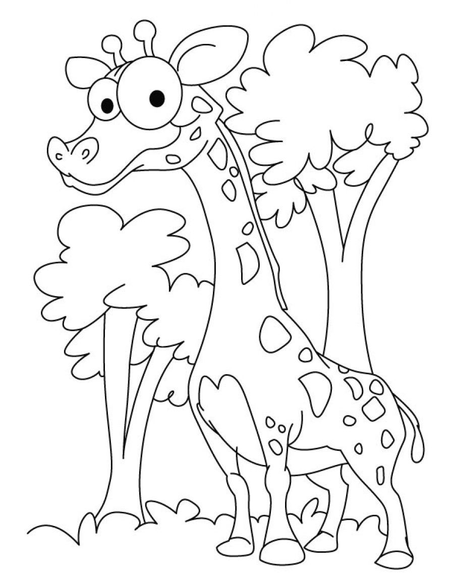 Free Printable Funny Giraffe Coloring Pages