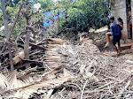 Dapur Tertimpa Pohon, Gadis Kecil Asal Oelolot  Lolos dari Maut