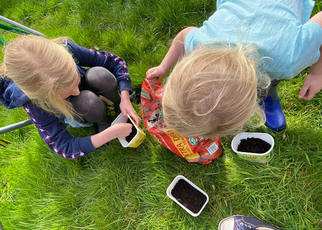learning at home with children doesn't have to just be formal learning, we have planted some salad and vegetables seeds and will be watching them grow