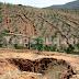 Conaf da cuenta que cerca del 22% del territorio nacional está en riesgo de desertificación