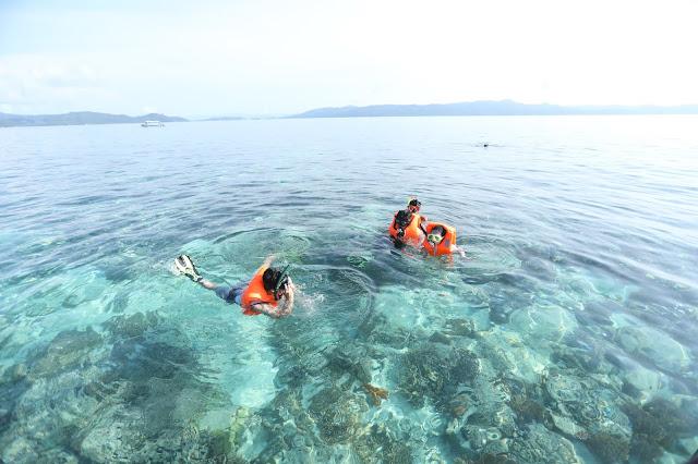 Snorkling di Raja Ampat