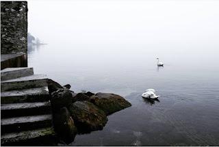 Những hồ nước phủ sương mơ màng khi sang đông 2