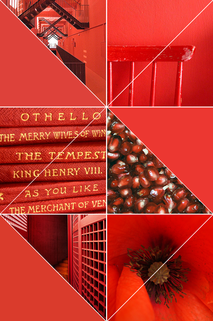 Orange Red, Coral, Pomegranate, photography, scarlet, pantone fall color trend, autumn