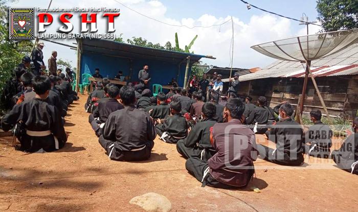 Tes Ayam Jago Calon Warga PSHT Ranting Pagar Dewa Cabang Lampung Barat