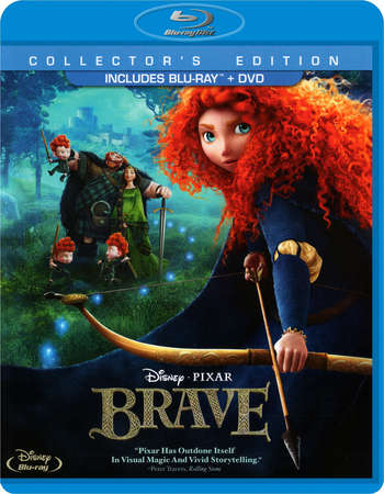 Poster Of Brave 2012 Dual Audio 720p BRRip [Hindi - English] Free Download Watch Online Worldfree4u