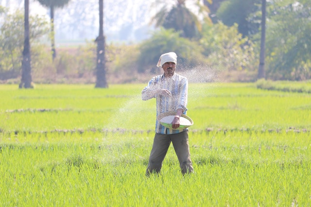 IFFCO Company Cuts Fertilizer Prices