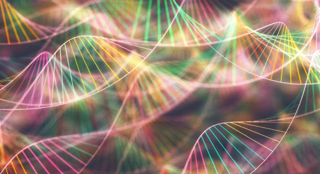 Researchers mix RNA and DNA to study how life's process began billions of years ago